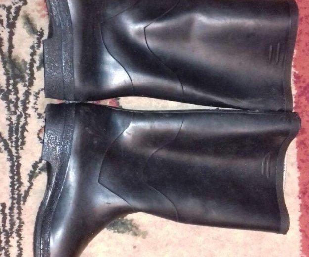 Резиновые сапоги новые. Фото 1. Юбилейный.