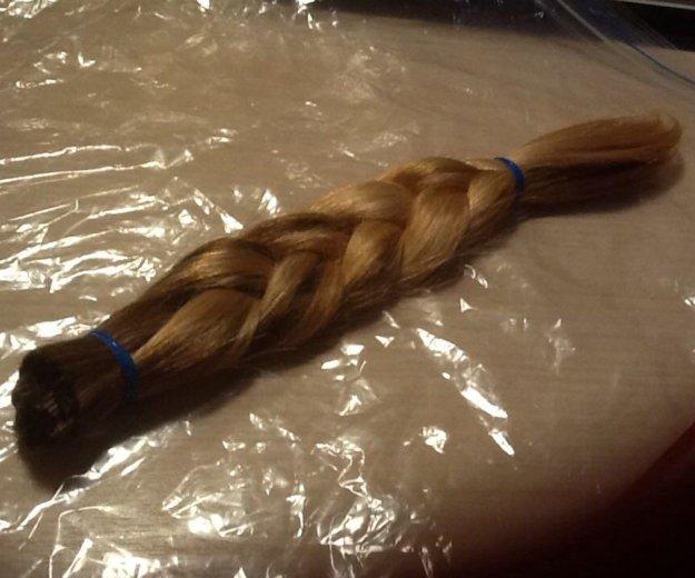 Натуральный срез волос. Фото 1. Богатое.