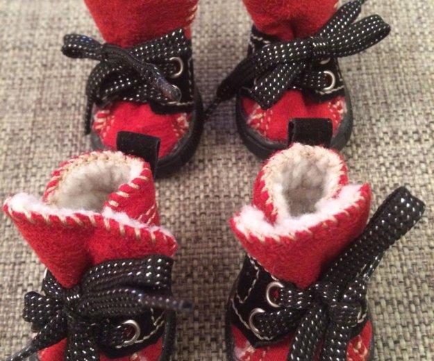 Ботиночки для собак 🐶угги для собачек 🐕. Фото 1. Москва.
