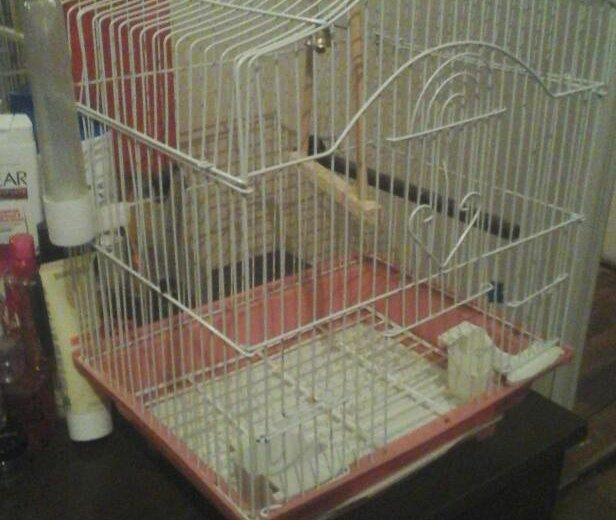Клетка для папугаев гатов обменять на папугая. Фото 1. Санкт-Петербург.