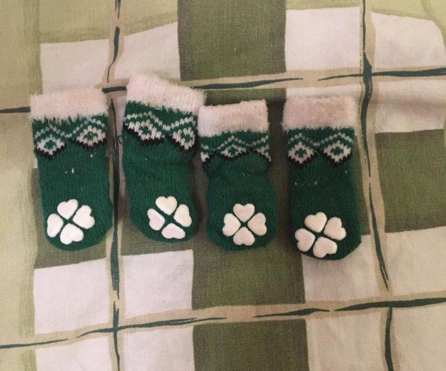 Носки для собак, размер s. Фото 1. Москва.
