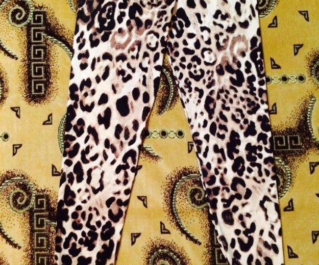 Леопардовые лосины. Фото 1. Краснодар.