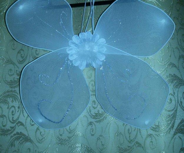 Крылья на праздник. Фото 1. Среднеуральск.