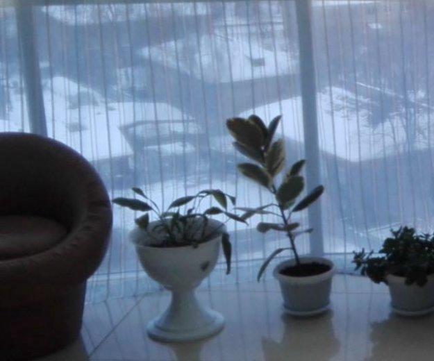 3-х комнатная кввртира. Фото 2. Екатеринбург.