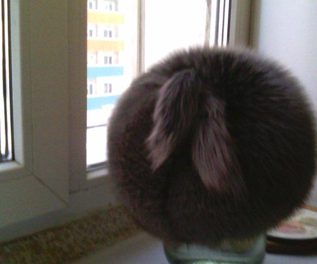 Шапка чернобурка. Фото 2. Якутск.