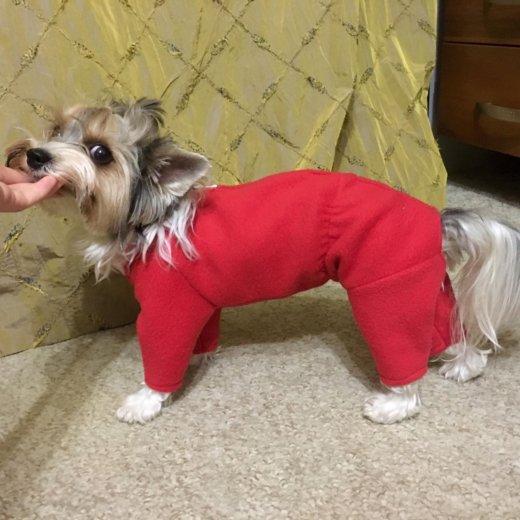 Пальто для собаки. Фото 3. Иркутск.