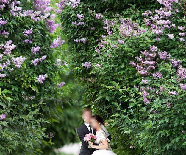 Продам очень лёгкое свадебное платье. Фото 3. Екатеринбург.