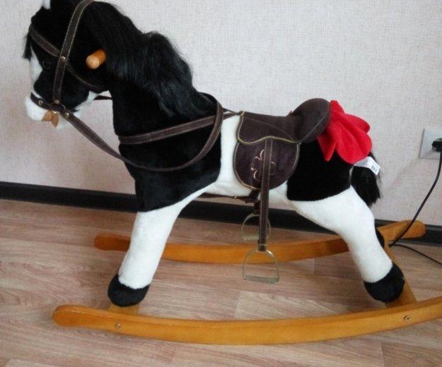 Лошадка качалка. Фото 1. Красноярск.