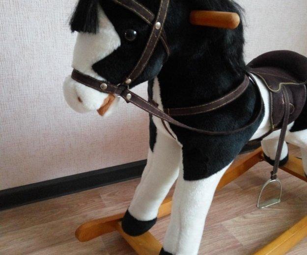 Лошадка качалка. Фото 2. Красноярск.