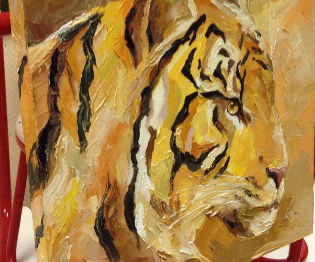 Тигр. Фото 1. Москва.