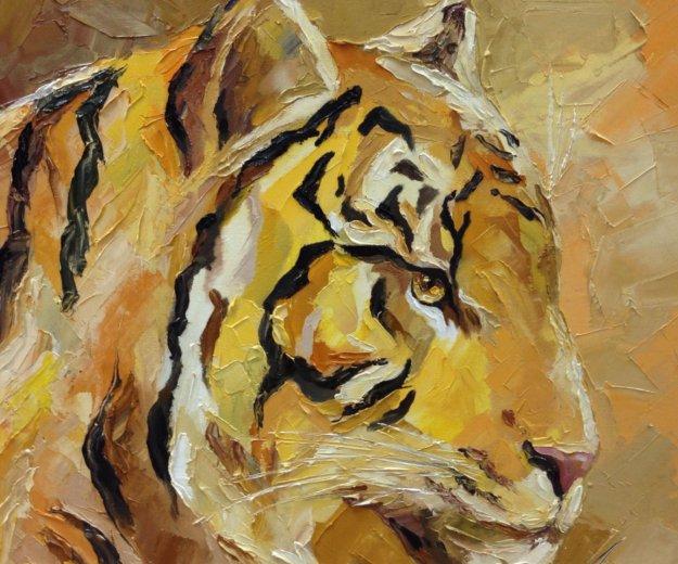 Тигр. Фото 2. Москва.