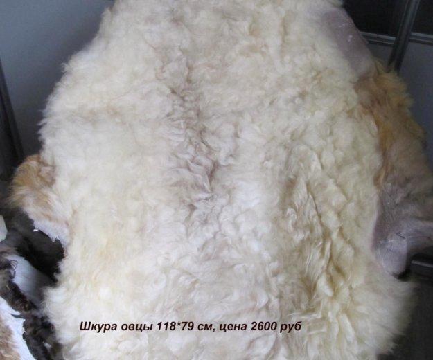 Шкуры,домашние тапочки,руковицы из натуральной шер. Фото 3. Волгоград.