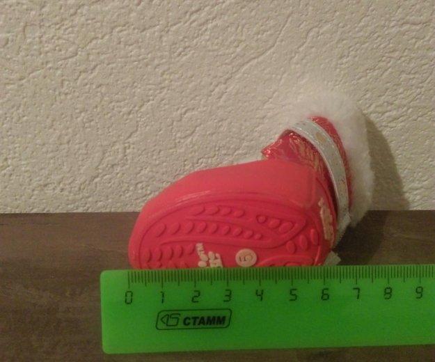 Ботинки для собаки. Фото 1. Усть-Лабинск.