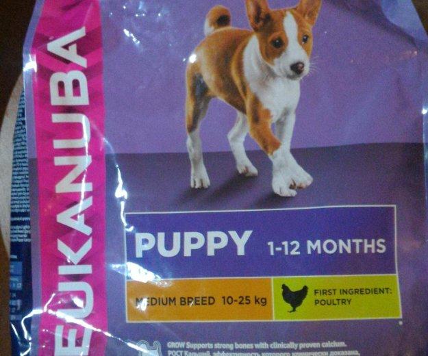 Корм для собак eukanuba. Фото 1. Железнодорожный.