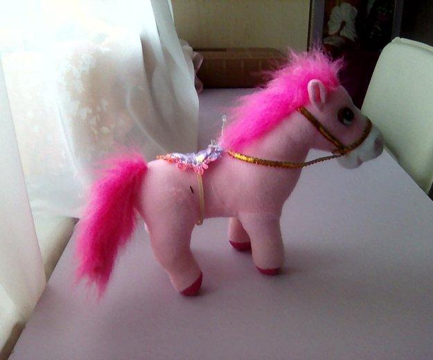 Розовый пони. Фото 2. Тарко-Сале.