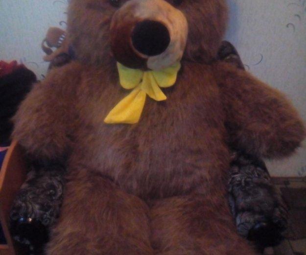 Плюшевый медведь. Фото 3. Моздок.