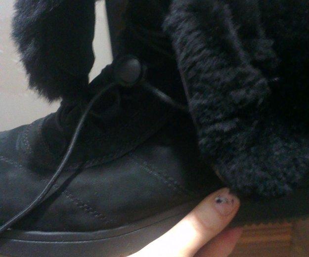 Высокие женские ботинки(новые). Фото 2. Москва.