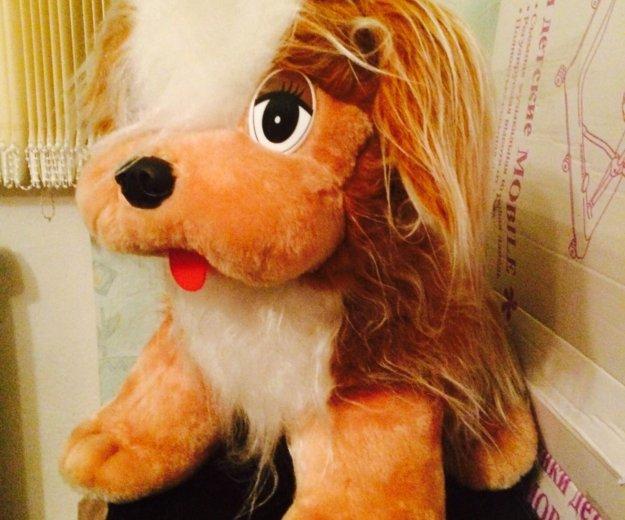 Игрушка собака. Фото 1. Петрозаводск.