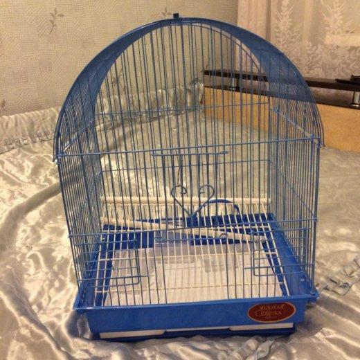 Клетка для попугая. Фото 1. Ростов-на-Дону.