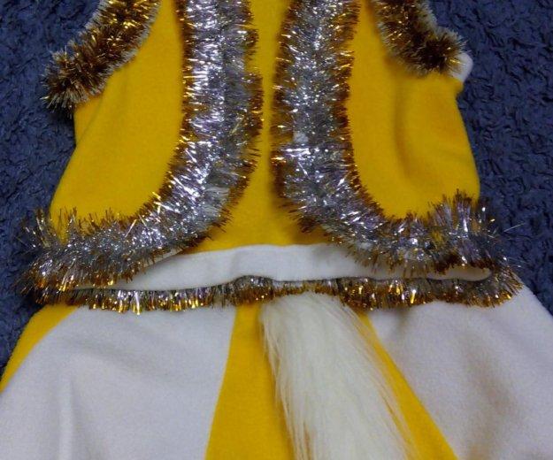 Новогодний костюм. Фото 1. Ставрополь.