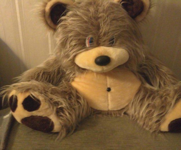 Медведь. Фото 1. Пермь.