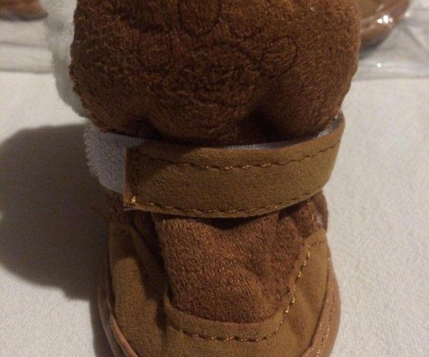 Обувь для собак. Фото 3. Брянск.