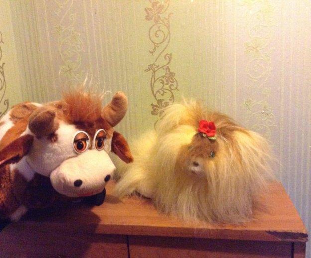 Подарки к 14 февраля. Фото 2. Брянск.