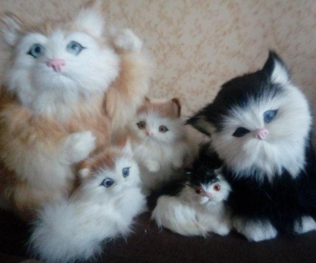 Кошки меховые. Фото 1. Москва.