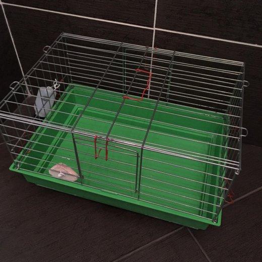 Клетка для свинки. Фото 3.