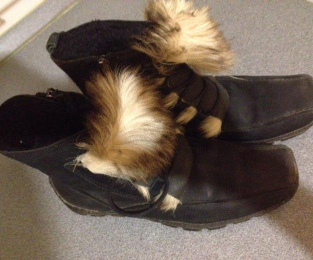 Ботинки зимние. Фото 2. Щёлково.
