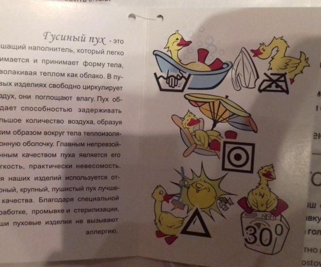 Зимний конверт. Фото 3. Сургут.