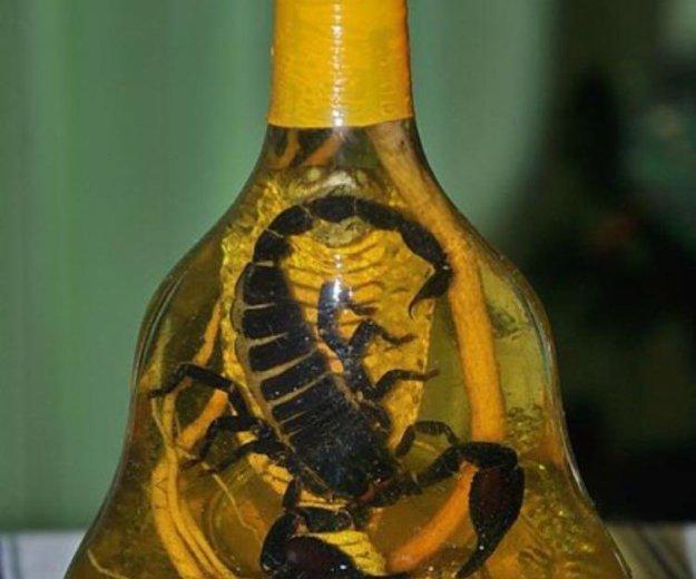 Кобра и чёрный скорпион лечебная настойка. Фото 1. Москва.
