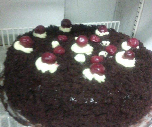 Вкусние торты на заказ, фруктоми, сливкоми,. Фото 1. Санкт-Петербург.