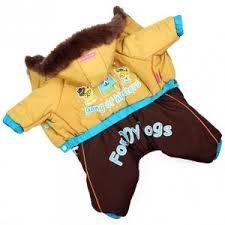 Одежда для собак. Фото 2. Калининград.
