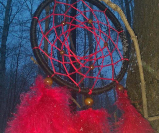 Ловец снов алая астра. Фото 2. Комсомольск-на-Амуре.