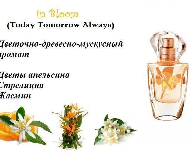 Жен.т.вода : always, in bloom. Фото 3. Санкт-Петербург.