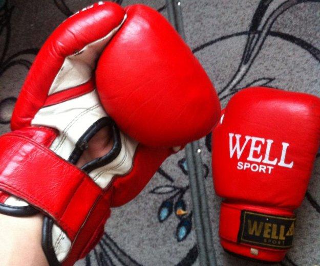 Боксерские перчатки. Фото 2. Заринск.