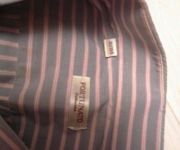 Рубашки мужские, р.l. Фото 2. Москва.