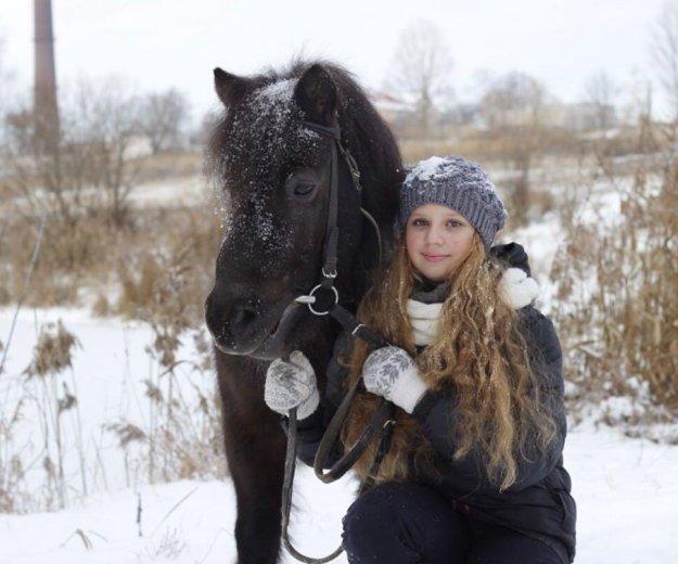 Зимние прогулки на лошадях. Фото 1. Южно-Сахалинск.