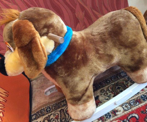 Собака-качалка. Фото 2. Ангарск.