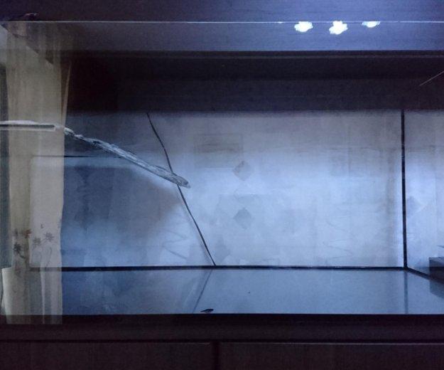 Террариум. Фото 1. Узловая.