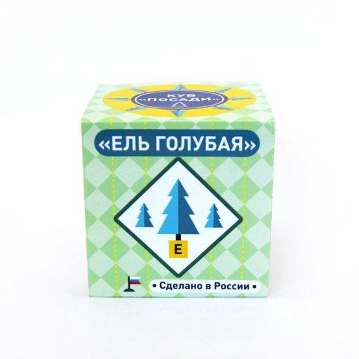 Эко-куб ель голубая. Фото 2. Москва.