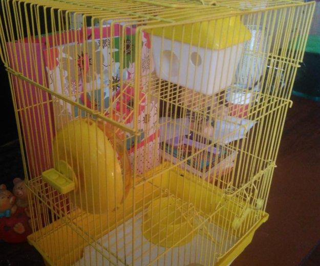 Клетка для крыс. Фото 3. Владивосток.