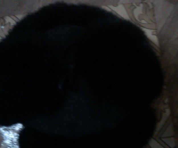 Породам шапку. Фото 1. Прокопьевск.