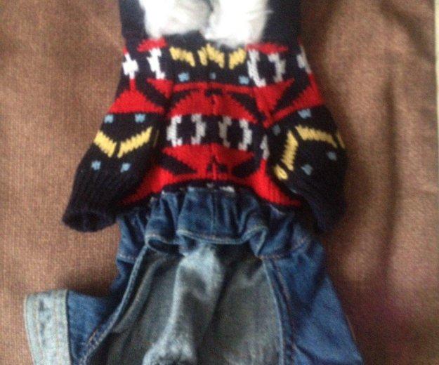 Новый костюм на собаку мини. Фото 2. Железнодорожный.