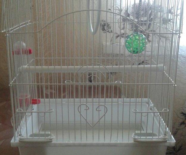 Клетка для птички. Фото 1. Владивосток.