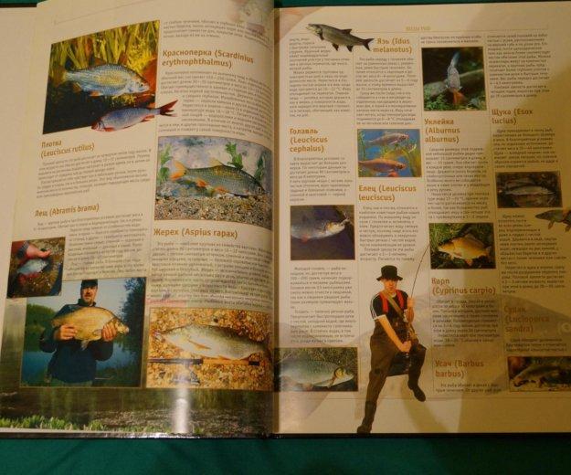 Книга рыбалка авторы мельников, сидоров. Фото 3. Ногинск.