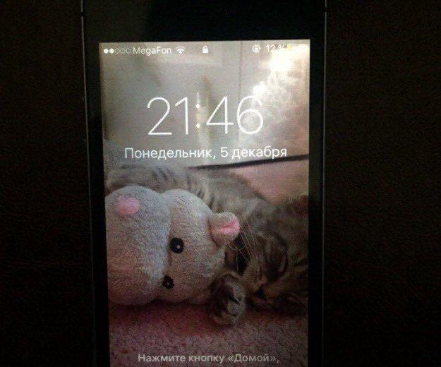 Iphone 5s. Фото 4. Тюмень.