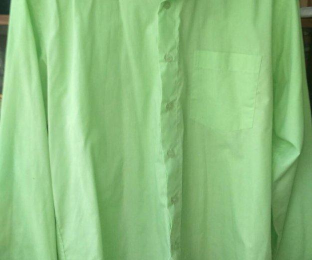 Куртка натуральная кожа 50. Фото 3. Санкт-Петербург.