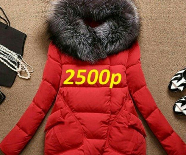 Укороченный пуховик-куртка. Фото 3. Владивосток.